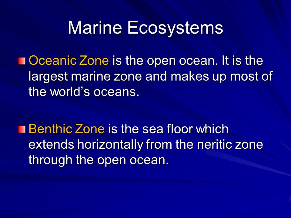 Marine Ecosystems Oceanic Zone is the open ocean. It is the largest marine zone and makes up most of the worlds oceans. Benthic Zone is the sea floor