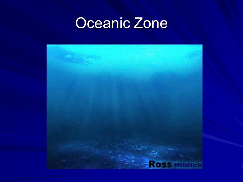 Oceanic Zone
