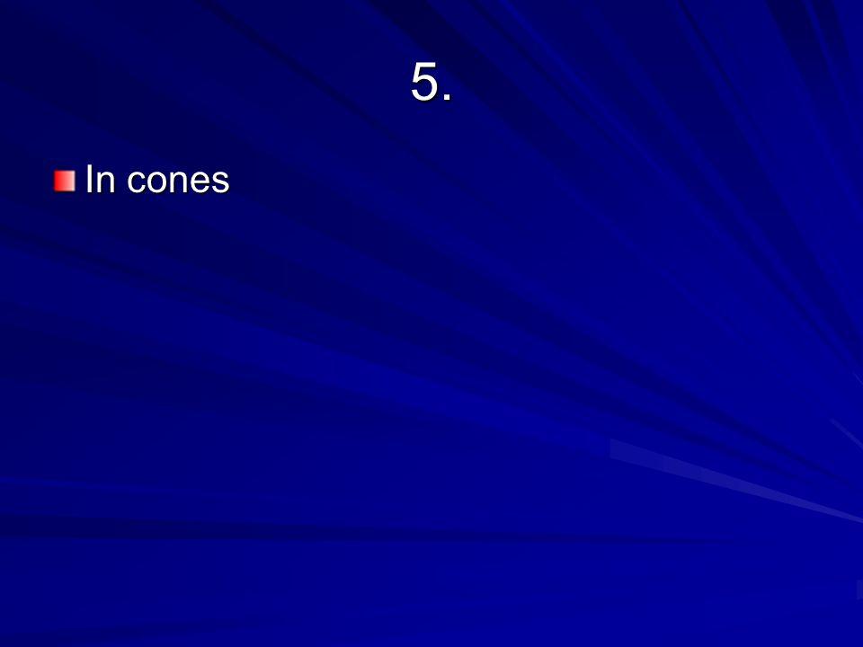 5. In cones