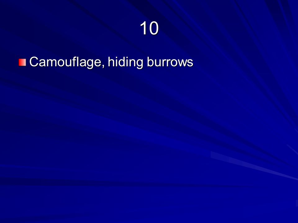10 Camouflage, hiding burrows