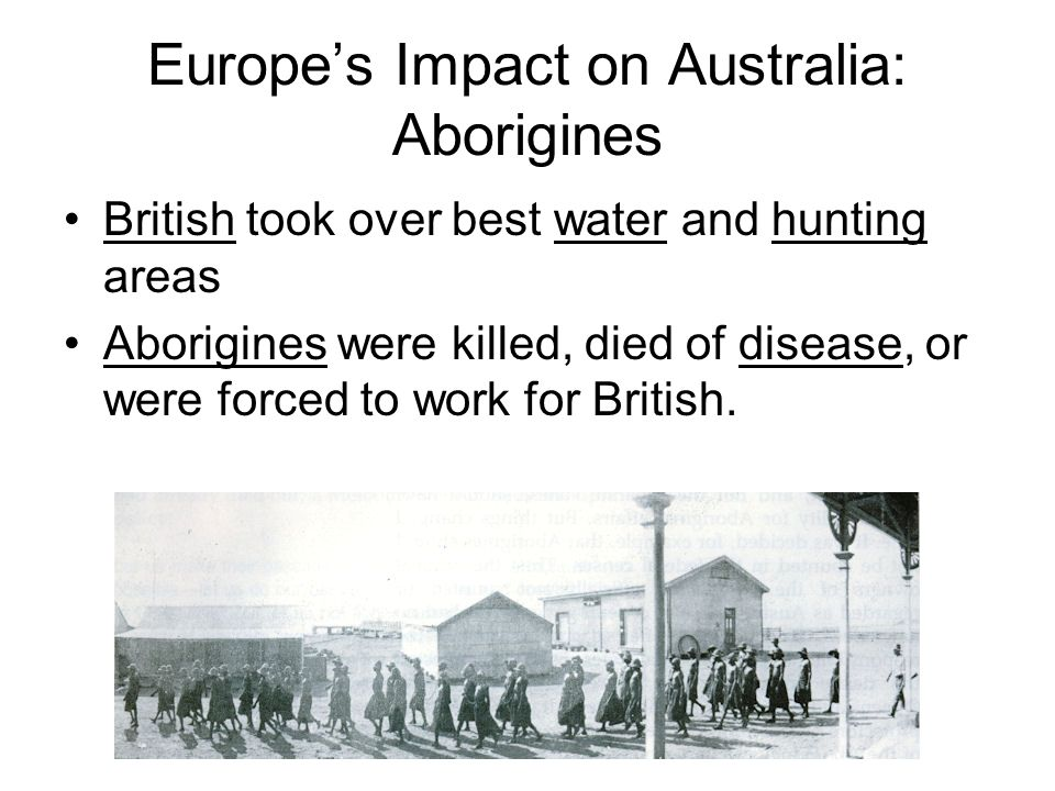 Europes Impact on Australia: Aborigines British took over best water and hunting areas Aborigines were killed, died of disease, or were forced to work