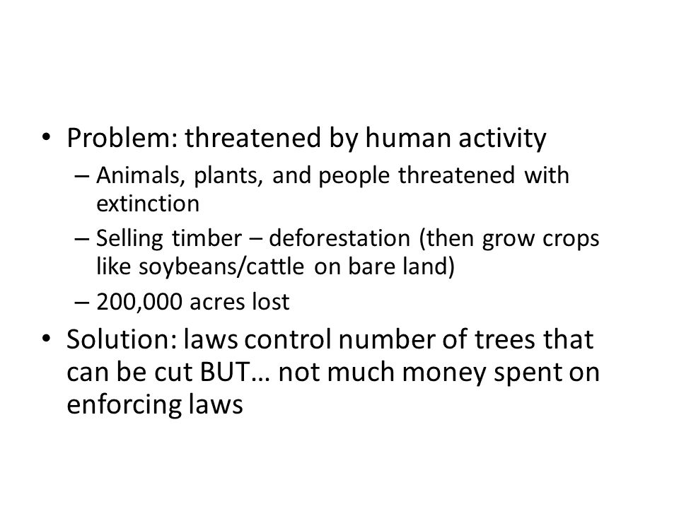 Problem: threatened by human activity – Animals, plants, and people threatened with extinction – Selling timber – deforestation (then grow crops like