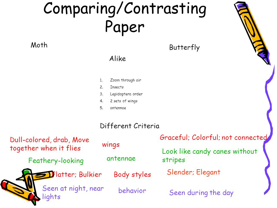 Comparing/Contrasting Paper Moth Butterfly Alike 1.Zoom through air 2.Insects 3.Lepidoptera order 4.2 sets of wings 5.antennae Different Criteria wing