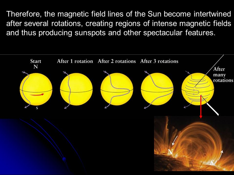 Therefore, the magnetic field lines of the Sun become intertwined after several rotations, creating regions of intense magnetic fields and thus produc