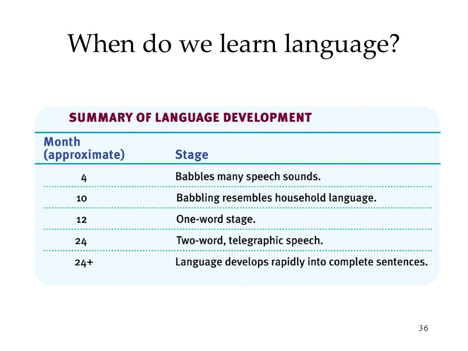 36 When do we learn language?