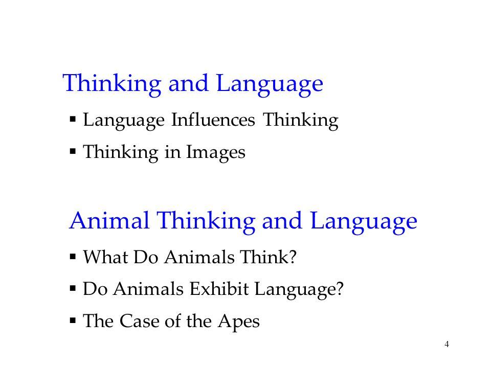 4 Thinking and Language Language Influences Thinking Thinking in Images Animal Thinking and Language What Do Animals Think? Do Animals Exhibit Languag