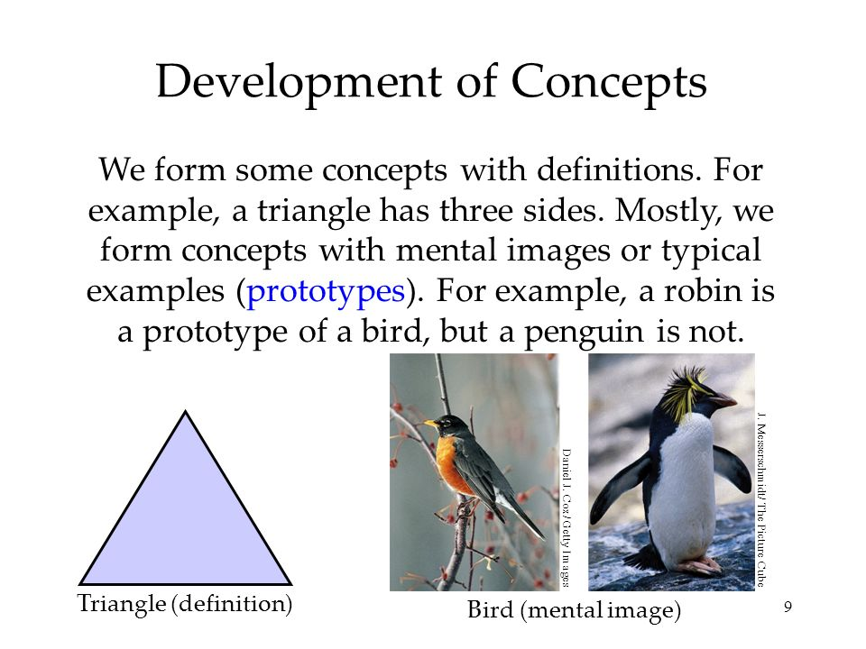 9 Development of Concepts We form some concepts with definitions. For example, a triangle has three sides. Mostly, we form concepts with mental images