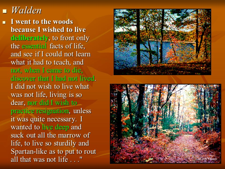 Walden Walden I went to the woods because I wished to live deliberately, to front only the essential facts of life, and see if I could not learn what