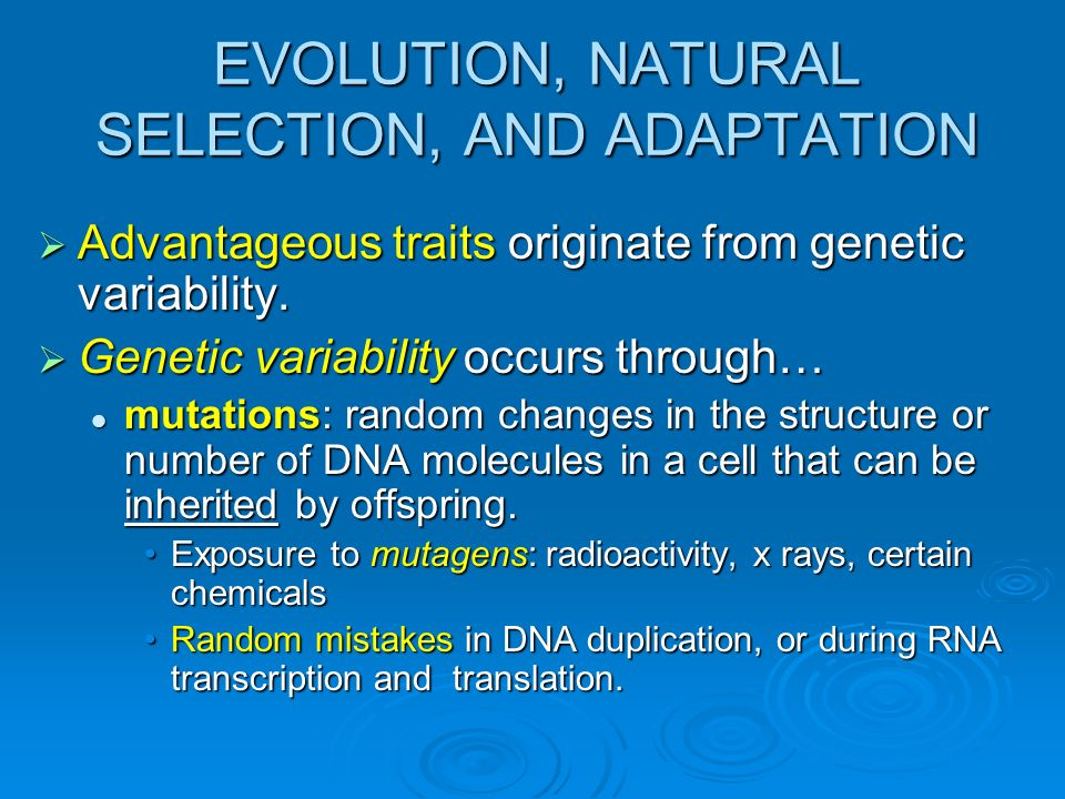 EVOLUTION, NATURAL SELECTION, AND ADAPTATION Advantageous traits originate from genetic variability. Advantageous traits originate from genetic variab
