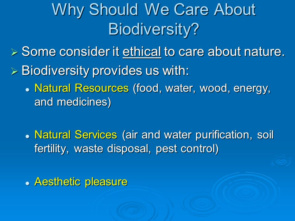 Why Should We Care About Biodiversity.Some consider it ethical to care about nature.