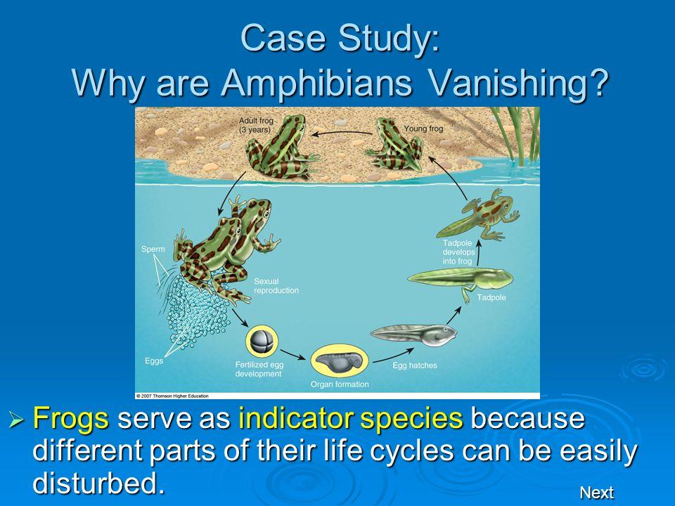 Case Study: Why are Amphibians Vanishing.