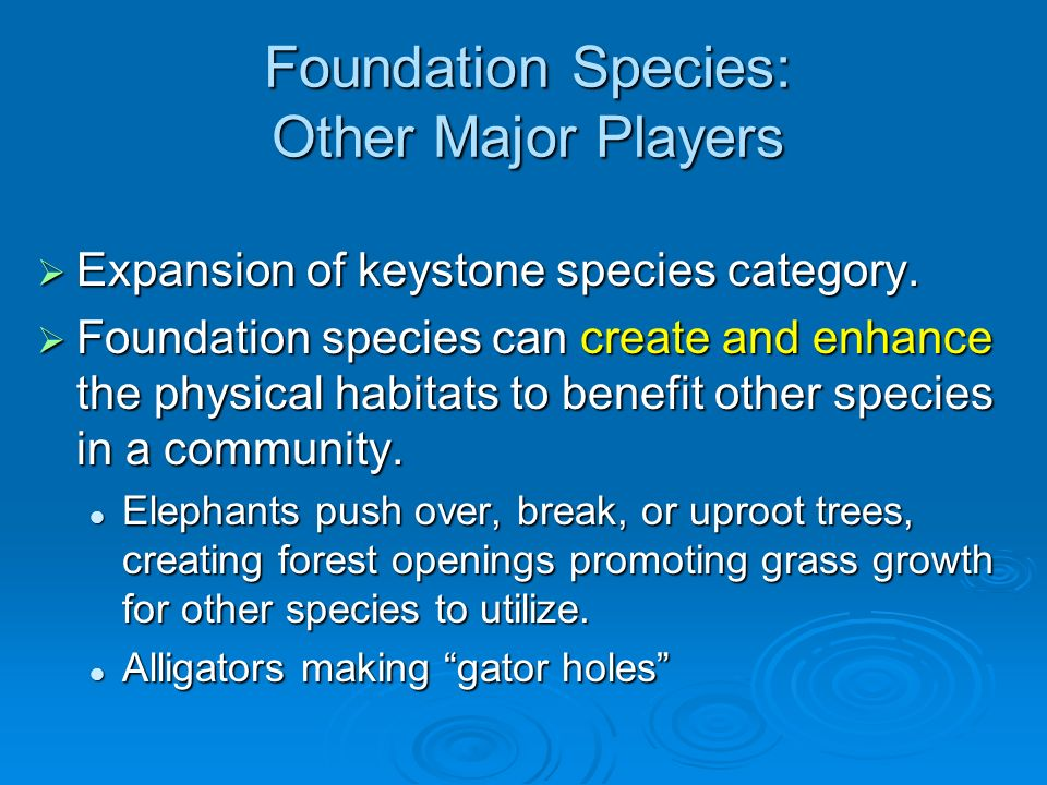 Foundation Species: Other Major Players Expansion of keystone species category.