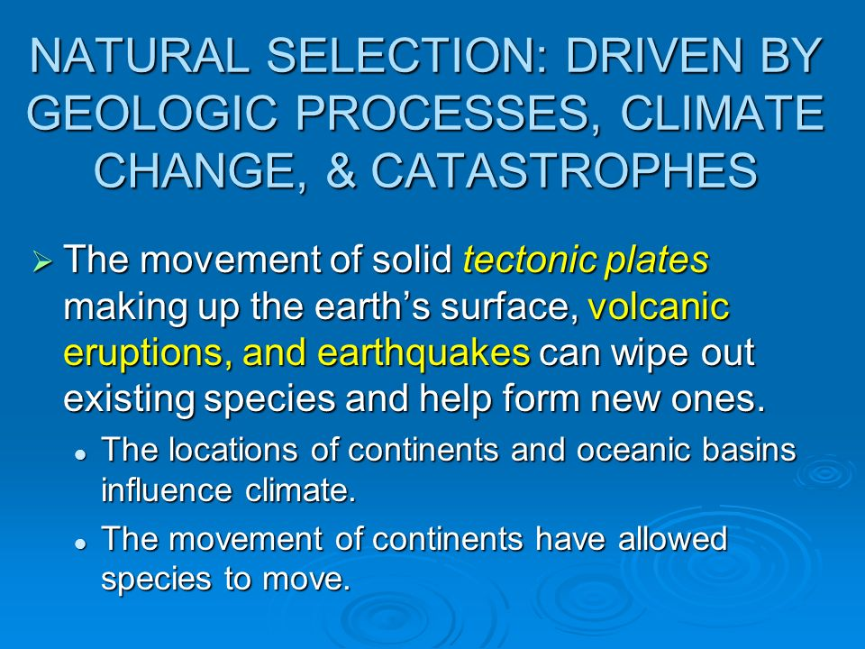 NATURAL SELECTION: DRIVEN BY GEOLOGIC PROCESSES, CLIMATE CHANGE, & CATASTROPHES The movement of solid tectonic plates making up the earths surface, vo