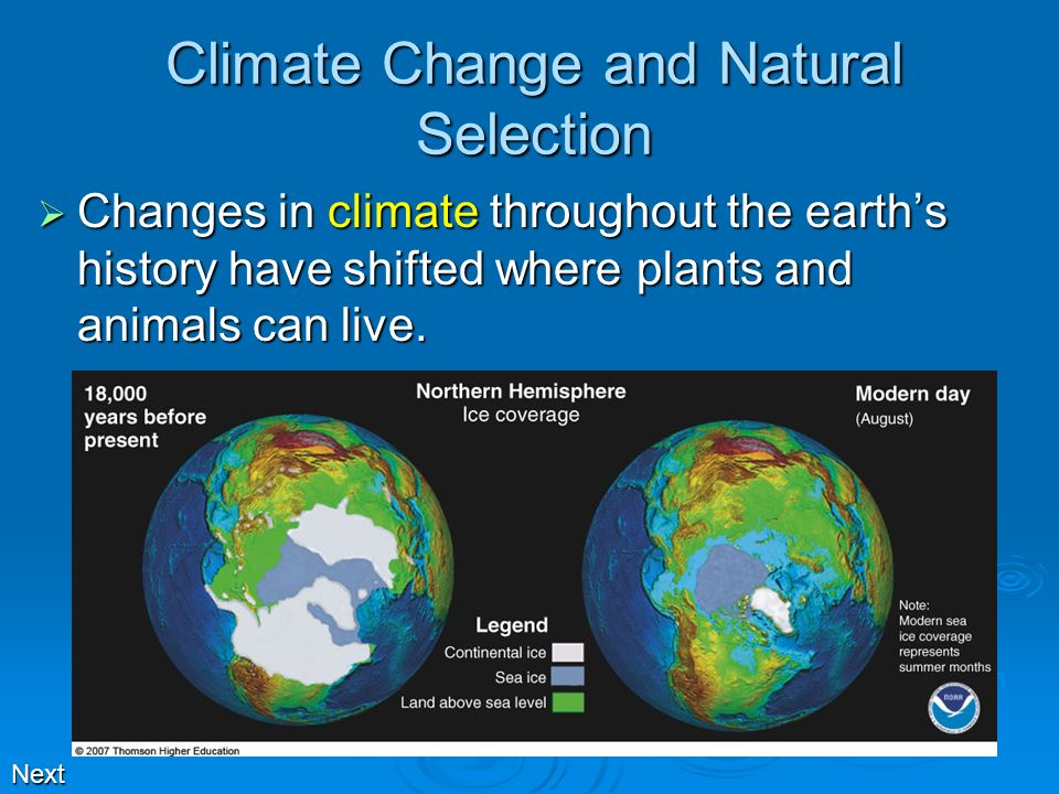 Climate Change and Natural Selection Changes in climate throughout the earths history have shifted where plants and animals can live. Changes in clima
