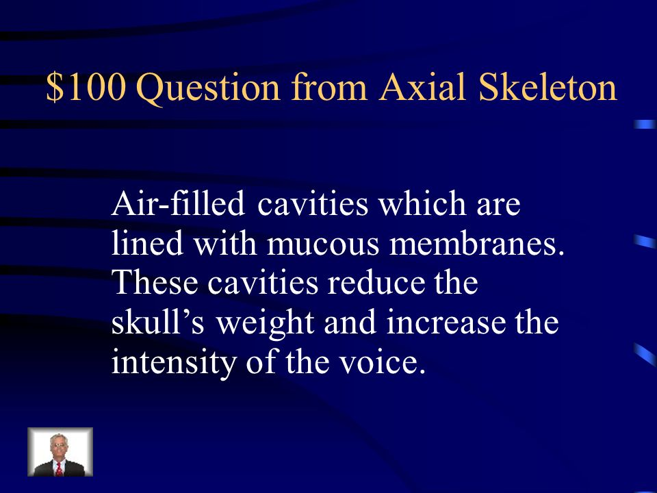 $500 Answer from Bone Structure What are osteoclasts?