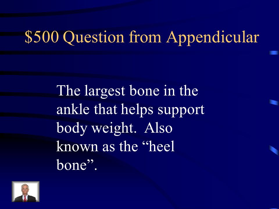 $400 Answer from Appendicular What is the femur?