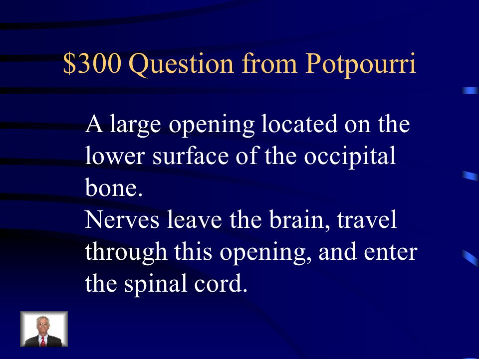 $200 Answer from Potpourri What is 206?