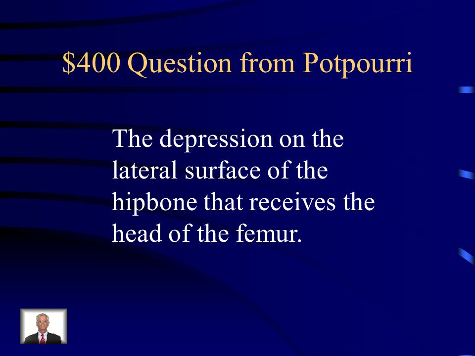 $300 Answer from Potpourri What is the foramen magnum?