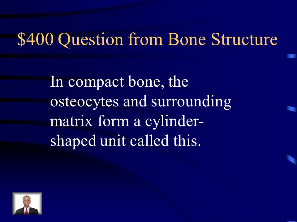 $300 Answer from Bone Structure What are lacunae?