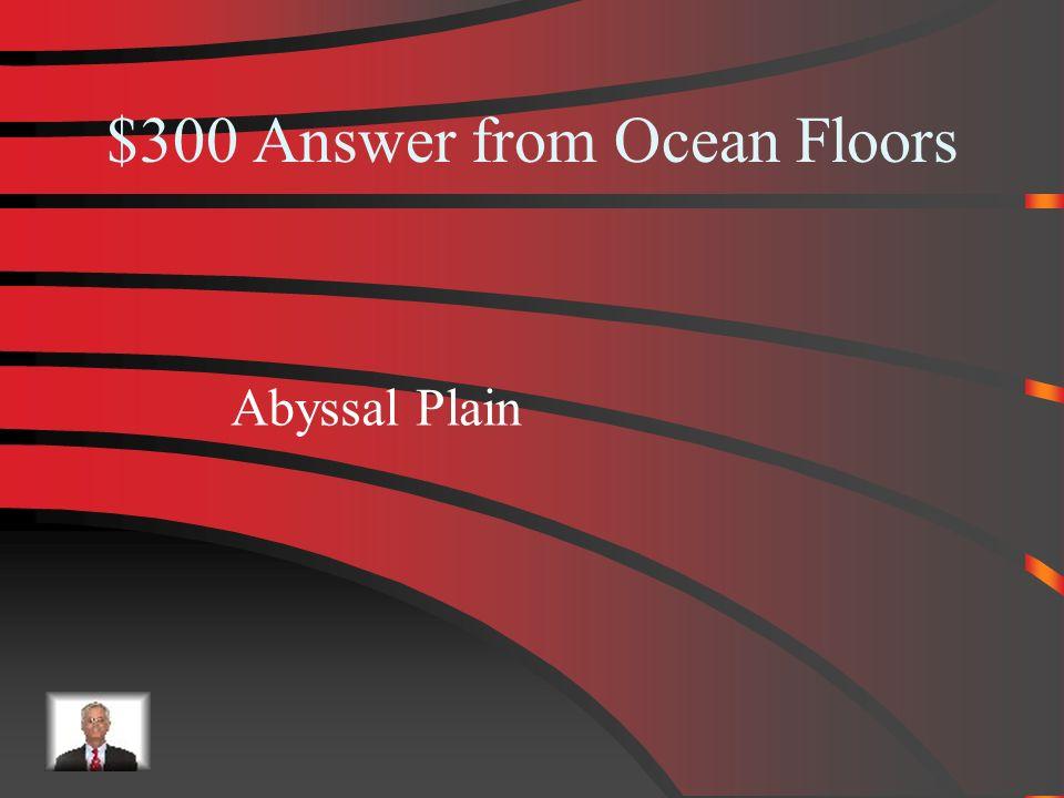 $300 Ocean Floors What is the real ocean floor?