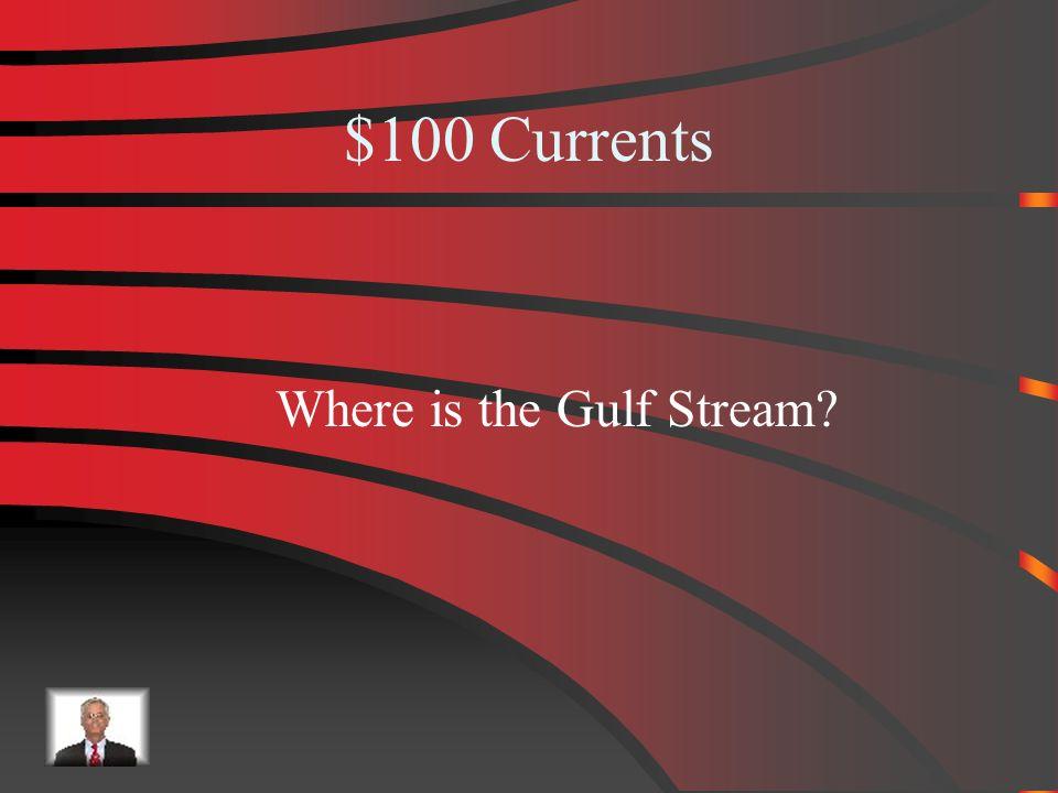 $500 Answer from Ocean Floor Guyot