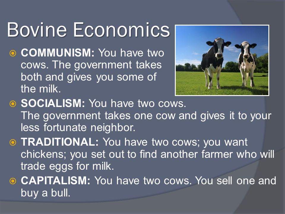 Bovine Economics COMMUNISM: You have two cows. The government takes both and gives you some of the milk. SOCIALISM: You have two cows. The government