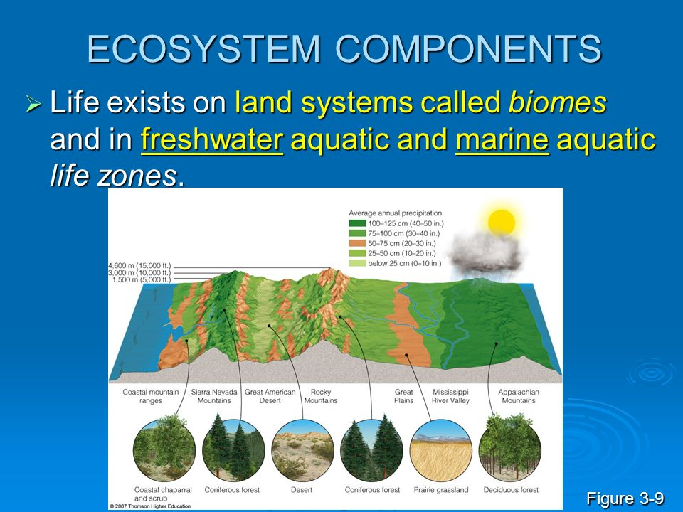 ECOSYSTEM COMPONENTS Life exists on land systems called biomes and in freshwater aquatic and marine aquatic life zones. Life exists on land systems ca