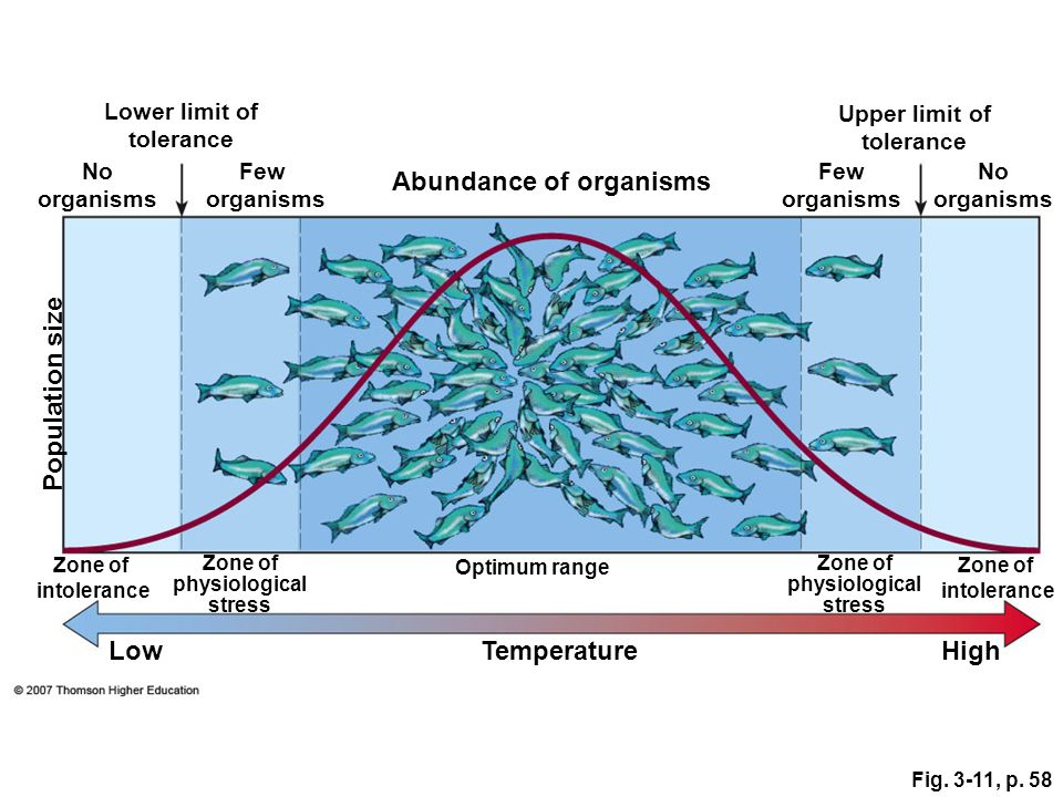 Fig. 3-11, p. 58 Zone of intolerance Optimum range Zone of physiological stress Zone of physiological stress Zone of intolerance TemperatureLowHigh No