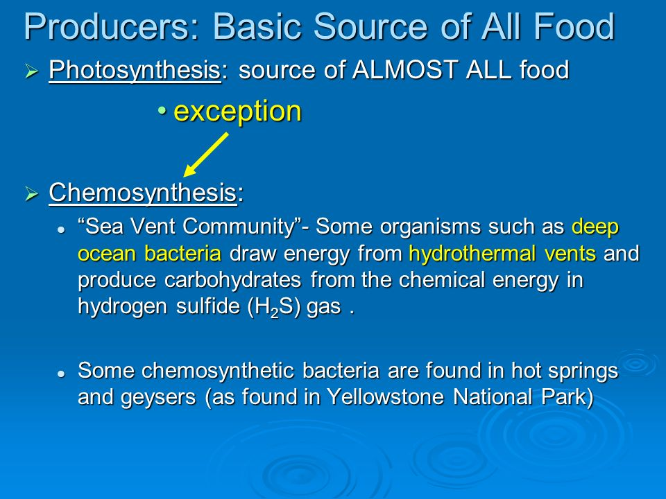 Producers: Basic Source of All Food Photosynthesis: source of ALMOST ALL food Photosynthesis: source of ALMOST ALL food exceptionexception Chemosynthesis: Chemosynthesis: Sea Vent Community- Some organisms such as deep ocean bacteria draw energy from hydrothermal vents and produce carbohydrates from the chemical energy in hydrogen sulfide (H 2 S) gas.