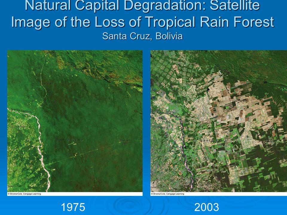 Natural Capital Degradation: Satellite Image of the Loss of Tropical Rain Forest Santa Cruz, Bolivia 19752003