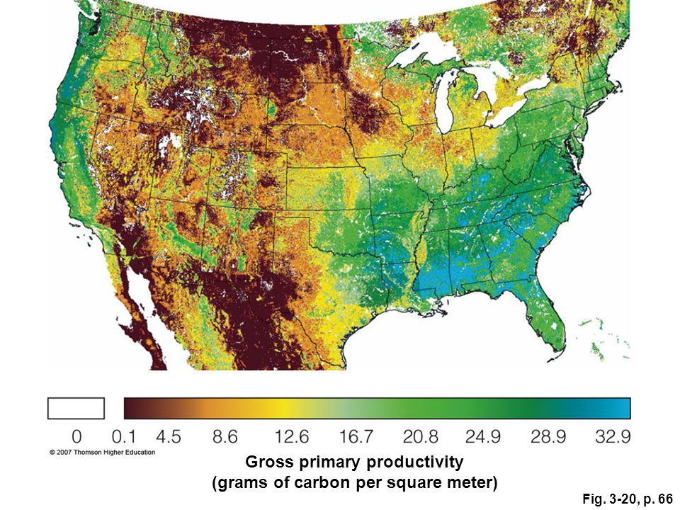Fig. 3-20, p. 66 Gross primary productivity (grams of carbon per square meter)