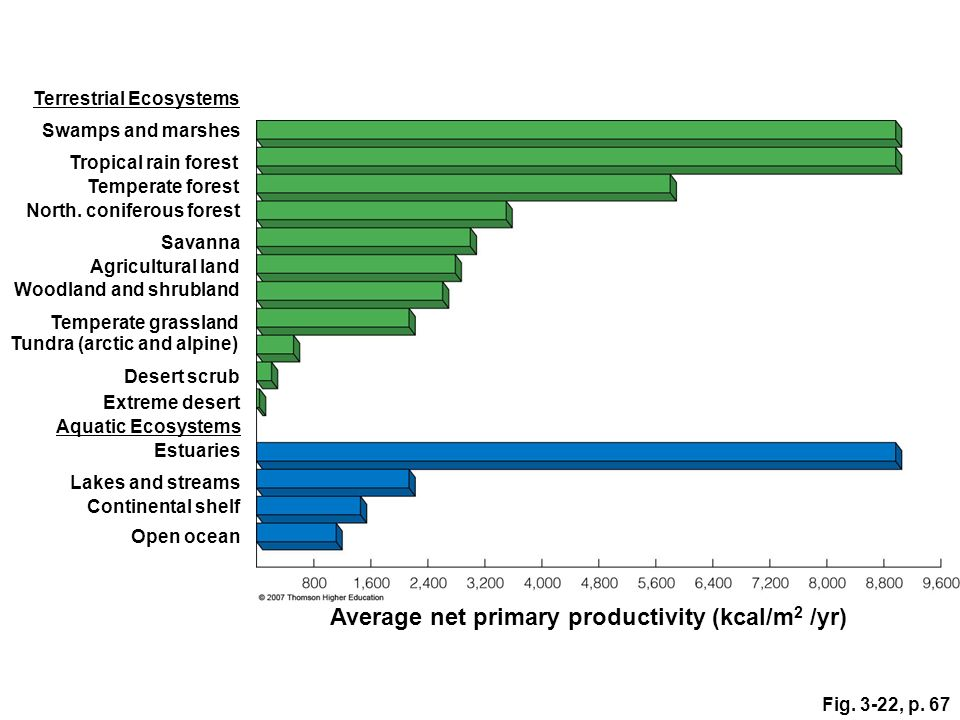 Fig. 3-22, p. 67 Average net primary productivity (kcal/m 2 /yr) Open ocean Continental shelf Lakes and streams Estuaries Aquatic Ecosystems Extreme d