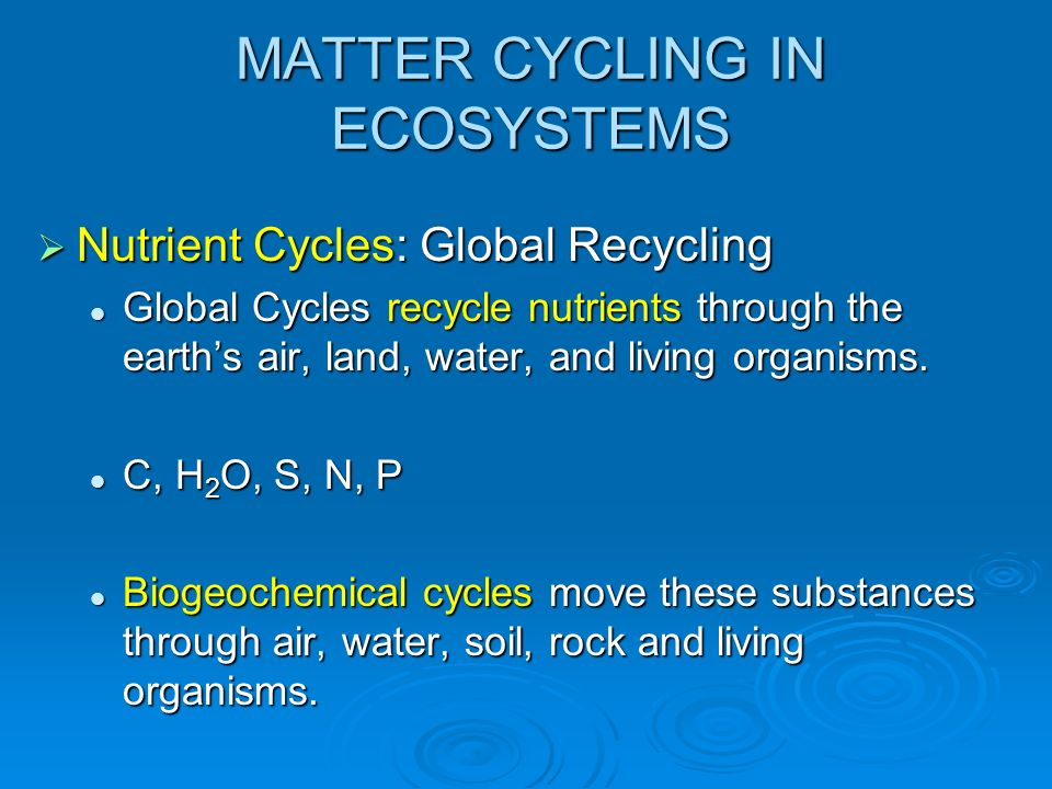 MATTER CYCLING IN ECOSYSTEMS Nutrient Cycles: Global Recycling Nutrient Cycles: Global Recycling Global Cycles recycle nutrients through the earths air, land, water, and living organisms.