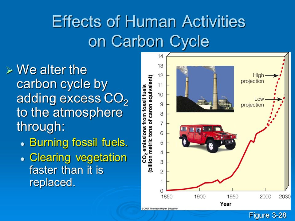 Effects of Human Activities on Carbon Cycle We alter the carbon cycle by adding excess CO 2 to the atmosphere through: We alter the carbon cycle by ad