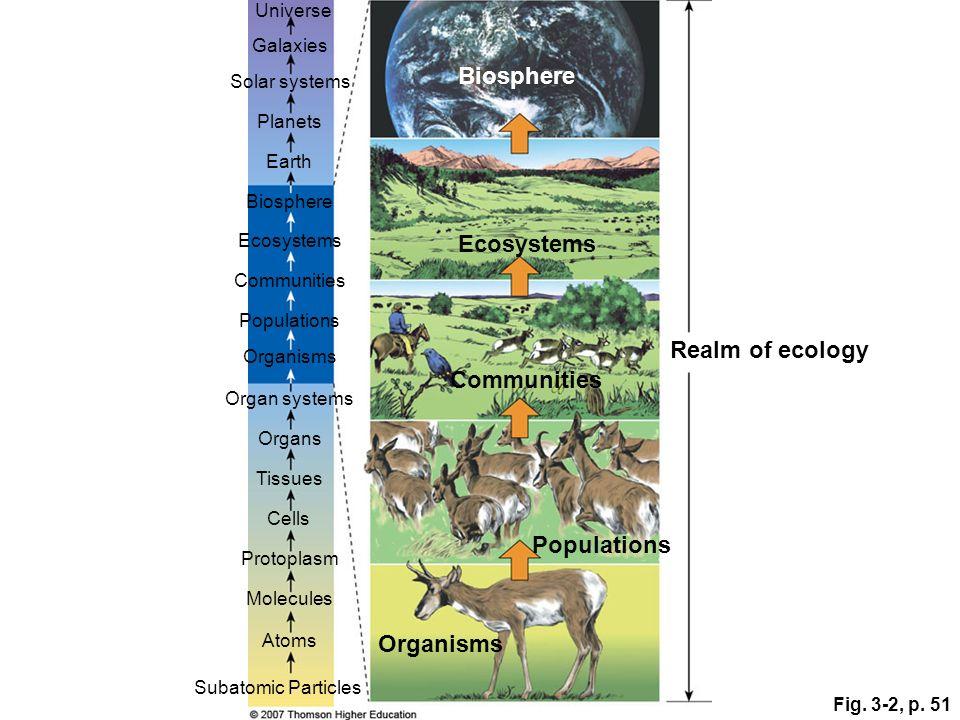 Fig. 3-2, p. 51 Communities Subatomic Particles Atoms Molecules Protoplasm Cells Tissues Organs Organ systems Organisms Populations Communities Ecosys