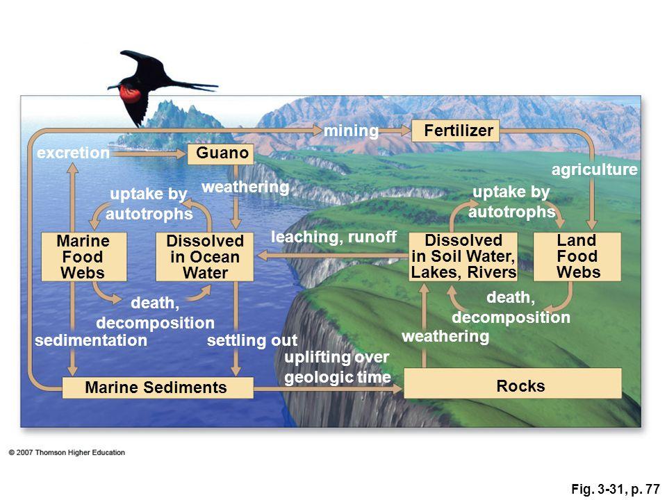 Fig. 3-31, p. 77 Dissolved in Ocean Water Marine Sediments Rocks uplifting over geologic time settling out weathering sedimentation Land Food Webs Dis