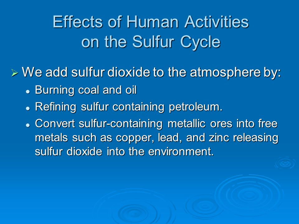 Effects of Human Activities on the Sulfur Cycle We add sulfur dioxide to the atmosphere by: We add sulfur dioxide to the atmosphere by: Burning coal and oil Burning coal and oil Refining sulfur containing petroleum.