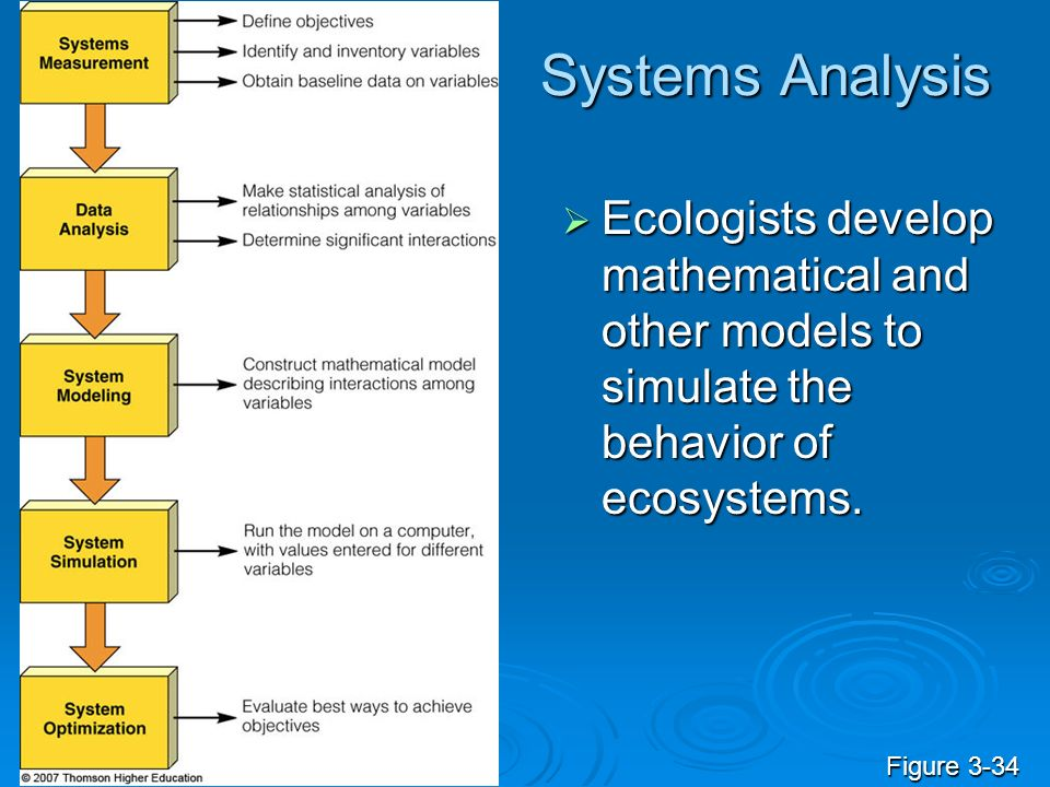 Systems Analysis Ecologists develop mathematical and other models to simulate the behavior of ecosystems.