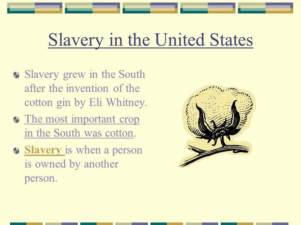 Slavery in the United States Slavery grew in the South after the invention of the cotton gin by Eli Whitney.