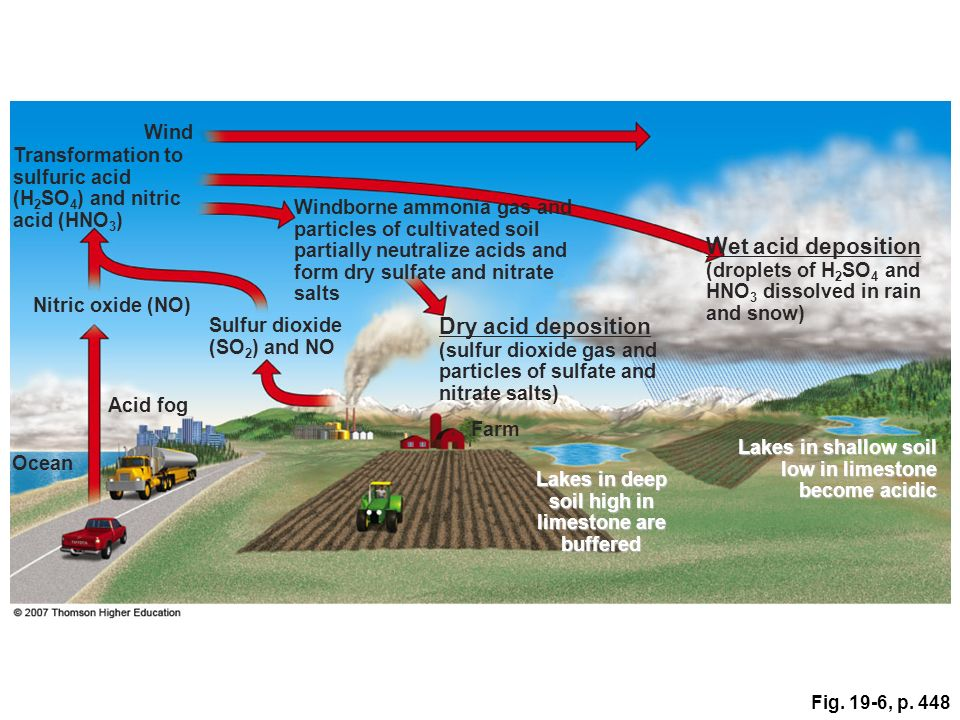 Fig. 19-6, p. 448 Wind Transformation to sulfuric acid (H 2 SO 4 ) and nitric acid (HNO 3 ) Windborne ammonia gas and particles of cultivated soil par
