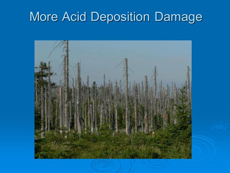 More Acid Deposition Damage