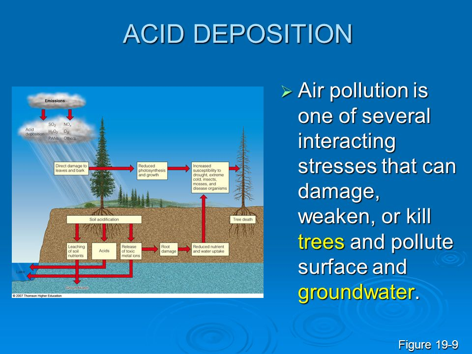 ACID DEPOSITION Air pollution is one of several interacting stresses that can damage, weaken, or kill trees and pollute surface and groundwater. Air p