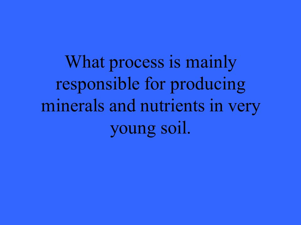 What process is mainly responsible for producing minerals and nutrients in very young soil.