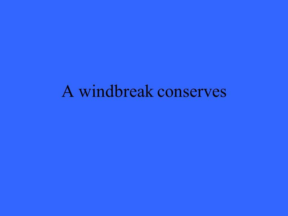 A windbreak conserves