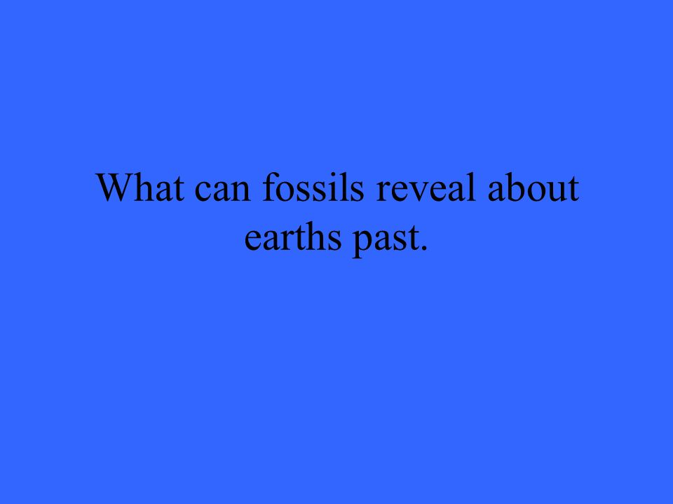What can fossils reveal about earths past.