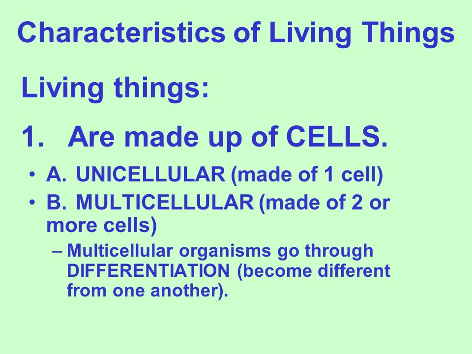 1.Are made up of CELLS.