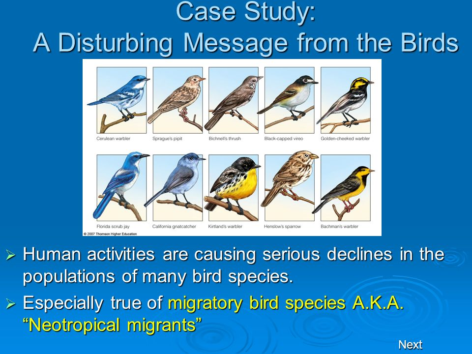 Case Study: A Disturbing Message from the Birds Human activities are causing serious declines in the populations of many bird species. Human activitie
