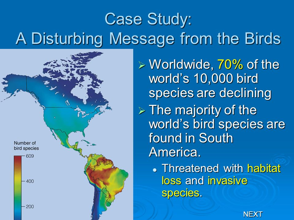 Case Study: A Disturbing Message from the Birds Worldwide, 70% of the worlds 10,000 bird species are declining Worldwide, 70% of the worlds 10,000 bir