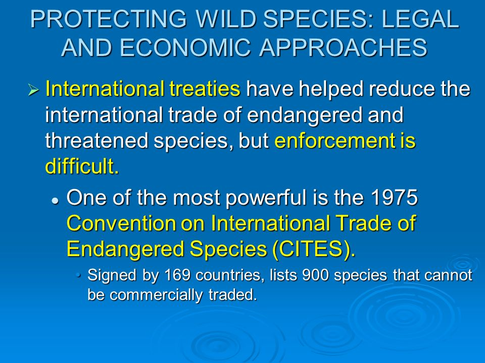 PROTECTING WILD SPECIES: LEGAL AND ECONOMIC APPROACHES International treaties have helped reduce the international trade of endangered and threatened