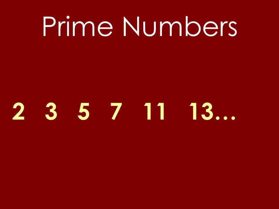 Prime Numbers 2 3 5 7 11 13…